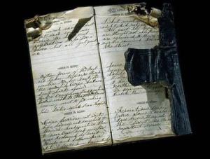 A Diary's Dire Circumstances?